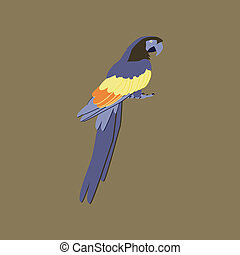 illustration in flat style of parrot