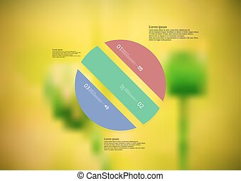 Illustration infographic template with circle askew divided ...