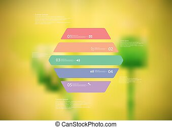 Illustration infographic template with hexagon horizontally divided to five color parts