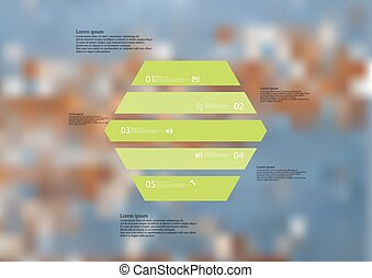 Illustration infographic template with hexagon horizontally divided to five green parts