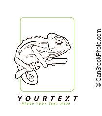 illustration, kameleont