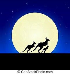 illustration., kangourou, lune, arrière-plan., vecteur, nuit, silhouette., bannière