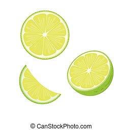 illustration. lime