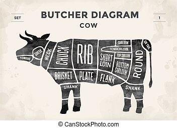 illustration., -, metzger, vektor, hand-drawn., schnitt, weinlese, schema, cow., typographisch, set., plakat, fleisch, diagramm