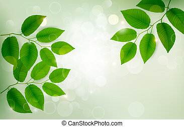 illustration., natur, blätter, vektor, grüner hintergrund, frisch
