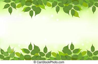 illustration., natuur, bladeren, vector, groene achtergrond, fris