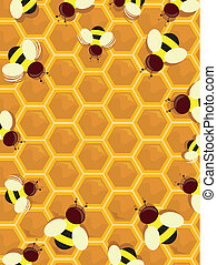 Beehive Frame - Illustration of a Beehive Frame with Honey...