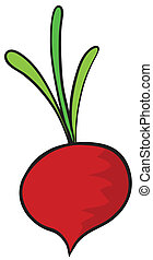 beetroot - illustration of a beetroot on a white background