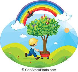 boy carrying tree in a trolley