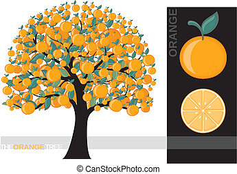 Illustration of a cartoon orange tree isolated on white background, very useful for several concepts
