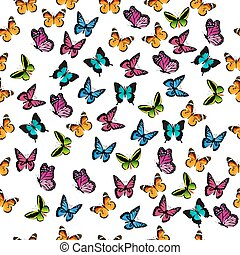 illustration of a colorful butterfly - Very high quality...