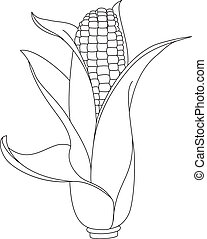 corn outlined - illustration of a corn outlined