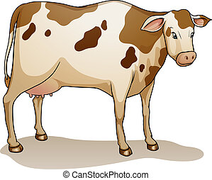 cow - illustration of a cow on a white background