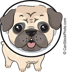 Illustration of a Dog Wearing a Protective Collar