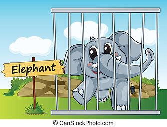 illustration of a elephant in cage and wooden board