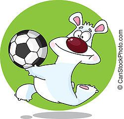 funny polar bear and ball