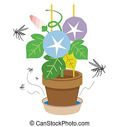 Illustration of a mosquito mosquito gathering in the water accumulated in the saucer of the flowerpot