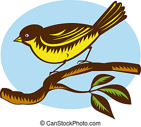 illustration of a New Zealand fantail bird on a branch done in retro woodcut style