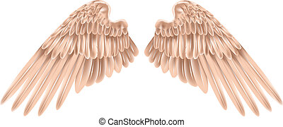 wings - Illustration of a pair of outstretched beautiful ...