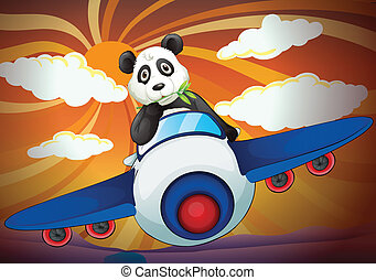 panda flying in air plane
