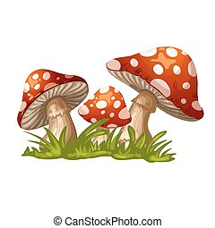 Illustration of a red mushroom in t