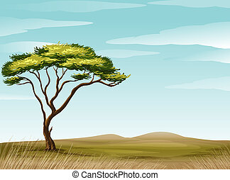illustration of a savannah landscape