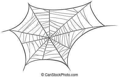 a spider net