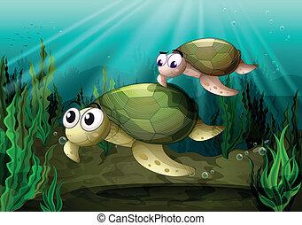 tortoise - illustration of a tortoise under sea water