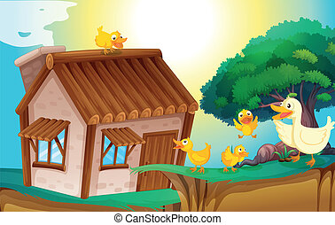 wooden house and ducks