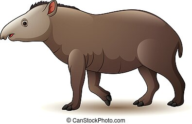 Illustration of american tapir isolated on white background