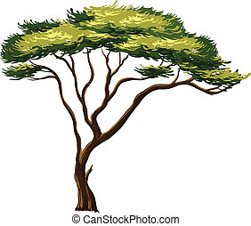 african tree - Illustration of an african tree