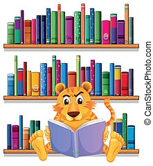Illustration of an angry tiger reading in front of the wooden shelves with books on a white background