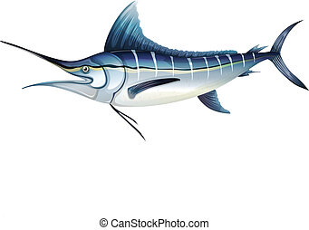 Atlantic blue marlin - Illustration of an Atlantic blue...