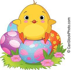 Easter Chicken