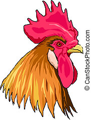 Illustration of an isolated cock