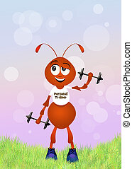 ant personal trainer