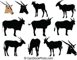 antelope silhouette - vector