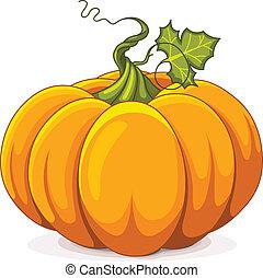 Autumn Pumpkin - Illustration of Autumn Pumpkin