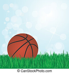 basketball on grass
