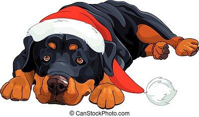 Christmas Rottweiler - Illustration of beautiful Christmas ...