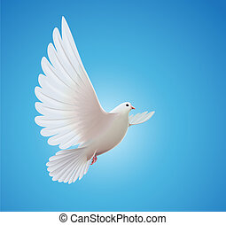 illustration of beautiful shiny white dove flying way up in a blue sky