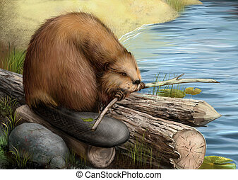 Illustration of beaver sitting on a log