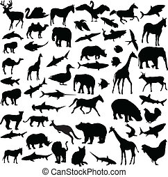 big collection of different animals