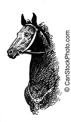 Illustration of black ink hand drawn horse