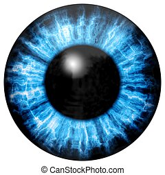 Illustration of blue eye iris, light reflection.