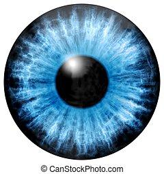 Illustration of blue eye iris, light reflection.