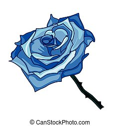 illustration of blue rose on a white background