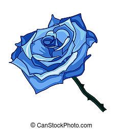 illustration of blue rose on a white background