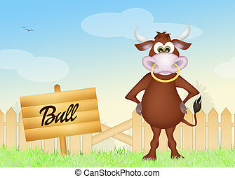 bull - illustration of bull