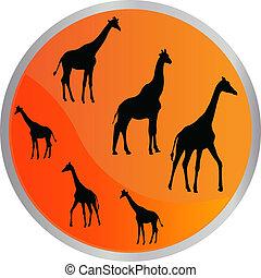 button with giraffe - vector